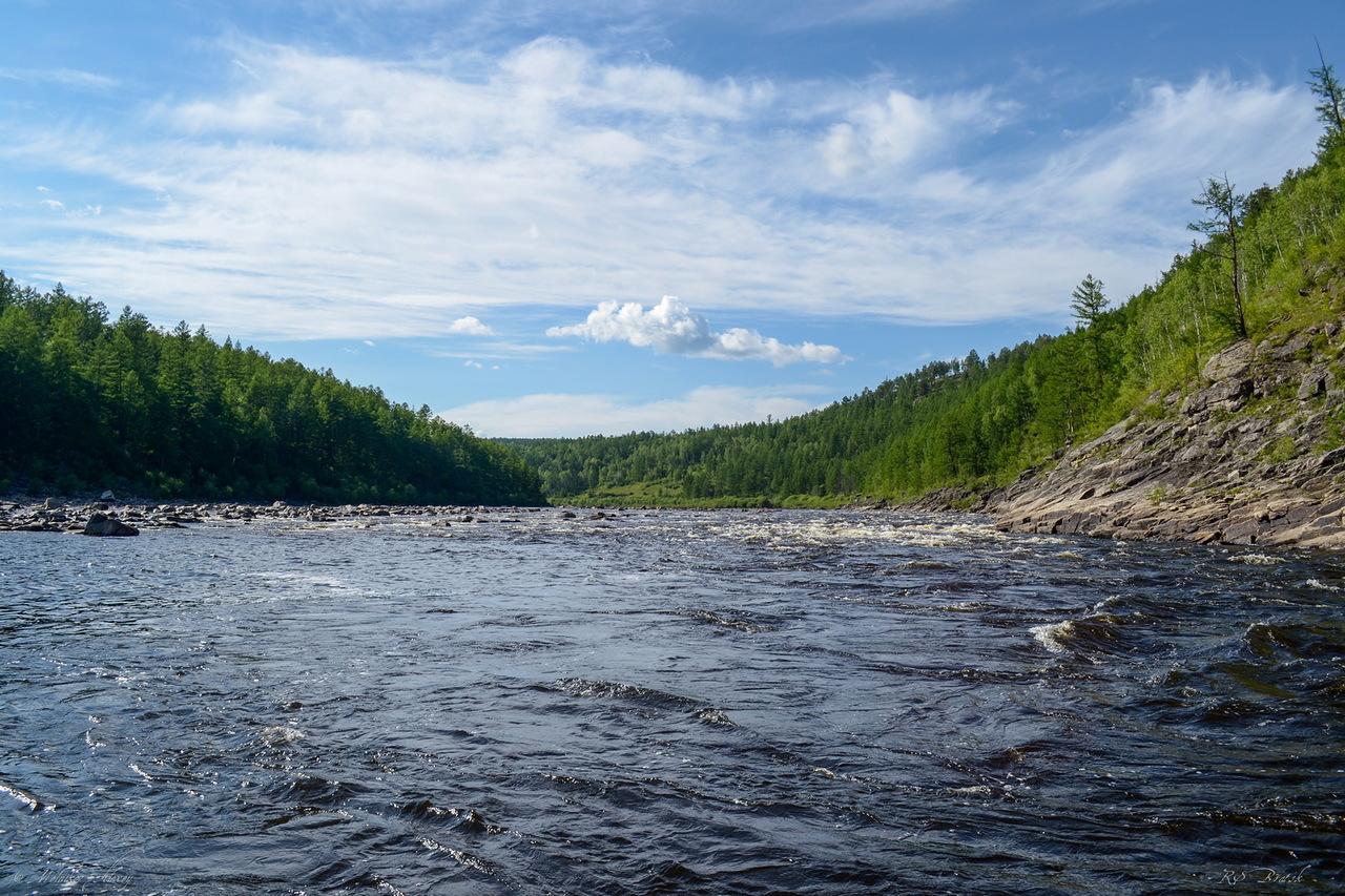 река витим фото доставляет сильные болезненные